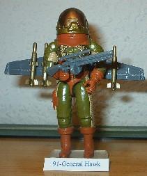 1991 Hawk